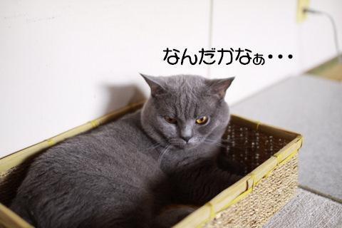 Img_79861